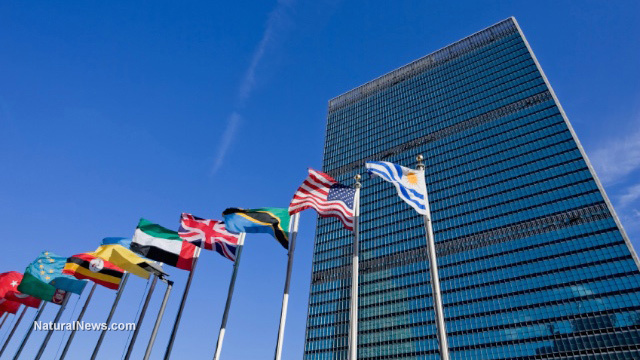 United-Nations-Building-Flags